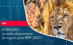 Ja Estao Disponiveis As Regras Para Irpf 2021 - Contabilidade no Méier Rio de Janeiro - RJ | Contábil Rio